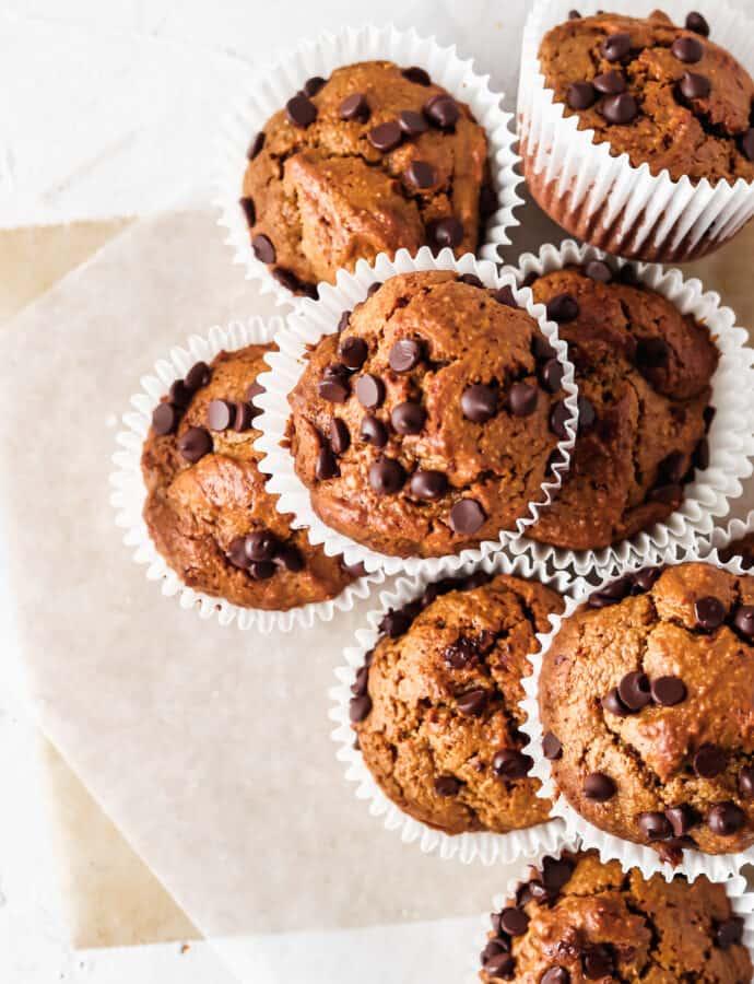 PALEO & Gluten Free Chocolate Chip Muffins