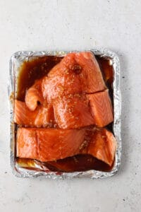 salmon on a toaster oven tray