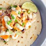 one taco on a blue plate