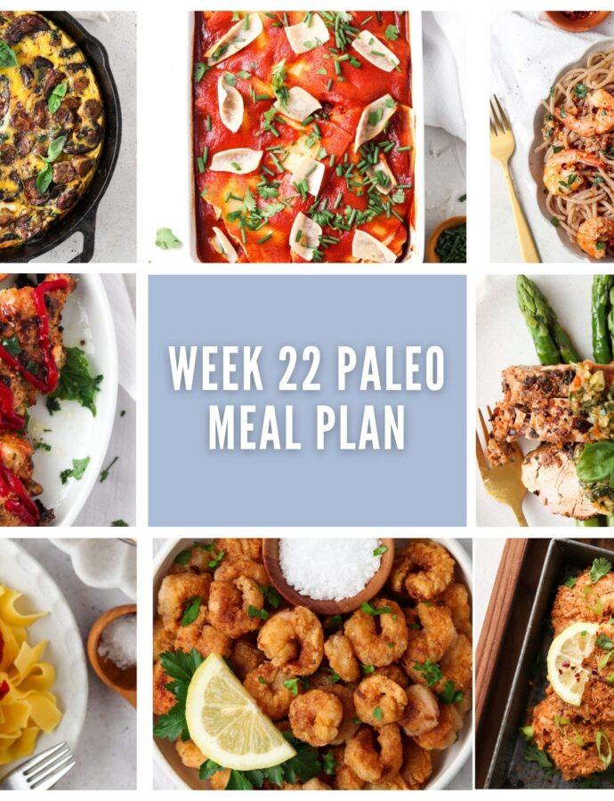 Week 22 Paleo Meal Plan