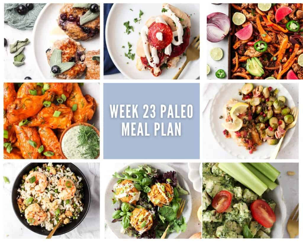 photo collage of paleo meals including one breakfast and seven lunch or dinner options with pale purple accent colors